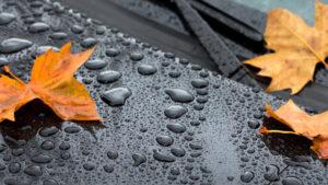 Увага: в Запорізькій області очікується погіршення погодних умов