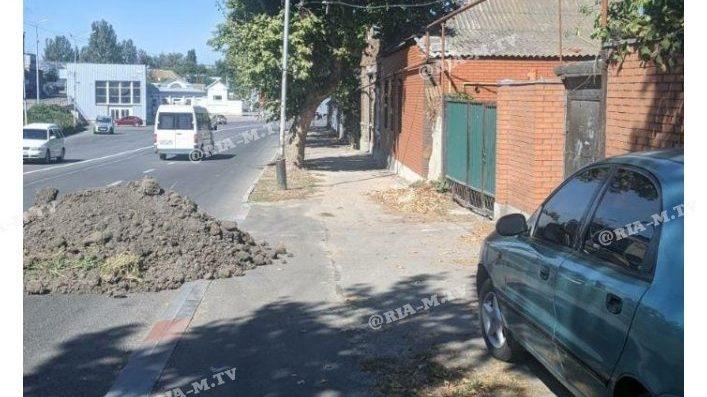 Житель Запорізької області на зло комунальникам засипав дорогу землею