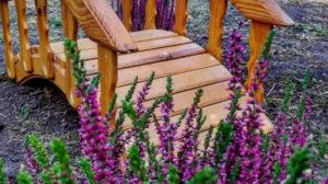 У Запорізькому ботанічному саду відкрили Галявину казок, – ФОТОРЕПОРТАЖ