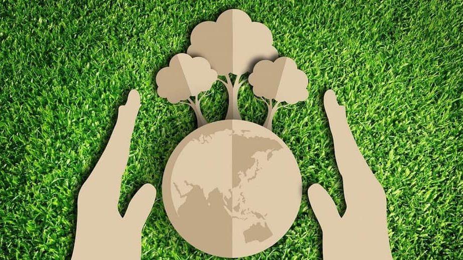 Каждый третий организатор «аполитичного» митинга за экологию в Запорожье – кандидат на будущих местных выборах