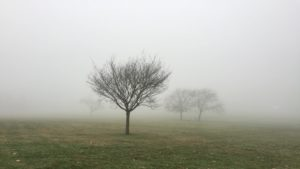 Запорожцев предупреждают об ухудшении погодных условий