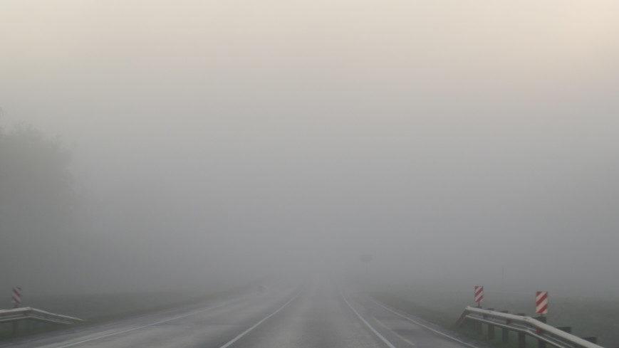 Жителей Запорожской области предупреждают о плотном тумане
