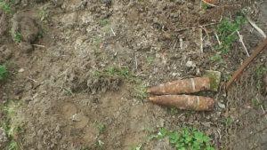 За день в Запоріжжі знайшли дві міни