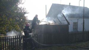 В Запорожской области пожарные потушили горящий дом