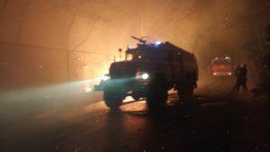 Луганська область палає: до ліквідації пожежі залучили запорізьких рятувальників