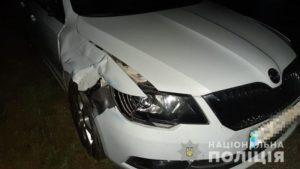 В Запорожской области на трассе под колесами иномарки погибла женщина-пешеход, – ФОТО