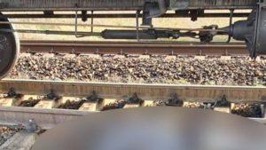 В Запорожской области мужчина погиб под колесами поезда, – ФОТО