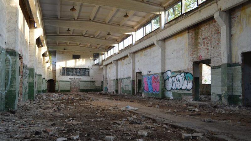 В Запорожье в центре заповедного острова разрушается большой заброшенный комплекс зданий, – ФОТОРЕПОРТАЖ