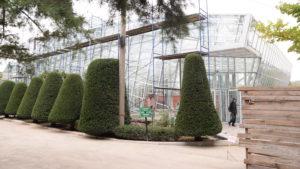 Тысячи уникальных растений в одном месте: экскурсия по Запорожскому ботаническому саду, – ФОТОРЕПОРТАЖ