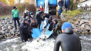 В Запорожье состоялась масштабная экологическая акция «Спасем Днепр вместе!», – ФОТО