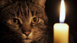 Жители Правого берега Запорожья временно останутся без света