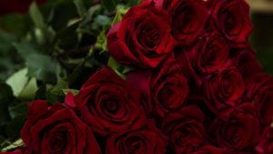 В Запорожье скончался выдающийся житель Запорожской области