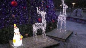 В центрі Запоріжжя вкрали новорічного оленя, бо так захотіла вагітна жінка одного з викрадачів