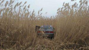 На трассе в Запорожской области автомобиль съехал в кювет: спасатели и медики помогли водителю