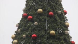 В Запорожье на площади Маяковского украшают главную городскую елку, – ФОТОРЕПОРТАЖ
