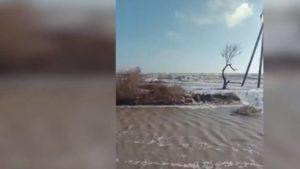 Безумный шторм в заповеднике в Запорожской области: затоплены базы отдыха и дорога к президентскому дому, — ВИДЕО