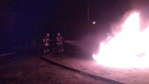 В Запорожской области сгорел автомобиль, – ФОТО