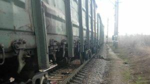 Під Запоріжжям жінка скоїла самогубство, кинувшись під потяг, — ФОТО