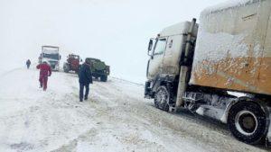 В Запорожье ожидаются сильные заморозки: спасатели предупреждают об опасности
