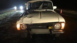 На запорожской трассе вечером насмерть сбили пешехода, – ФОТО