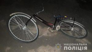 В Запорожской области легковушка сбила велосипедистку, – ФОТО