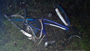 В Запорожской области насмерть сбили велосипедиста, – ФОТО