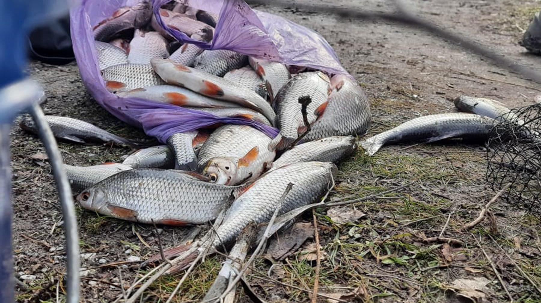 У Запоріжжі працівники водної поліції виявили браконьєрів та чоловіка з наркотиками, – ФОТО