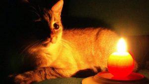 Більше двох десятків будинків в Запоріжжі залишаться сьогодні без електроенергії, — АДРЕСИ