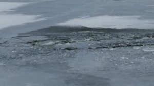 На Запоріжжі провалилась під кригу «Таврія»: пасажири встигли врятуватись, — ФОТО