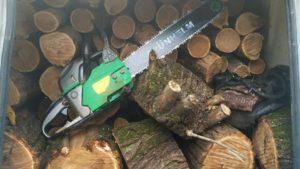 В Запорожье задержали гражданина, который незаконно рубил деревья, – ФОТО