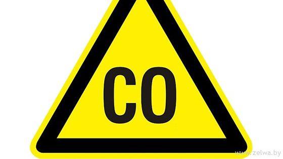 В Запорожской области 9-летний мальчик отравился угарным газом