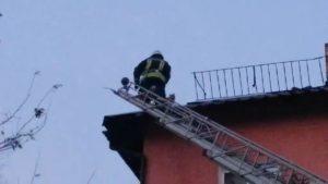 У Запоріжжі бійці ДСНС врятували кота, який застряг на даху будинку, – ФОТО