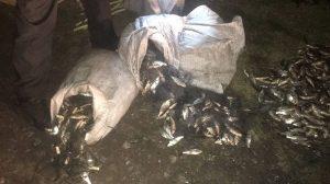 В Запорізькій області викрили браконьєра, який наловил 50 кілограмів риби