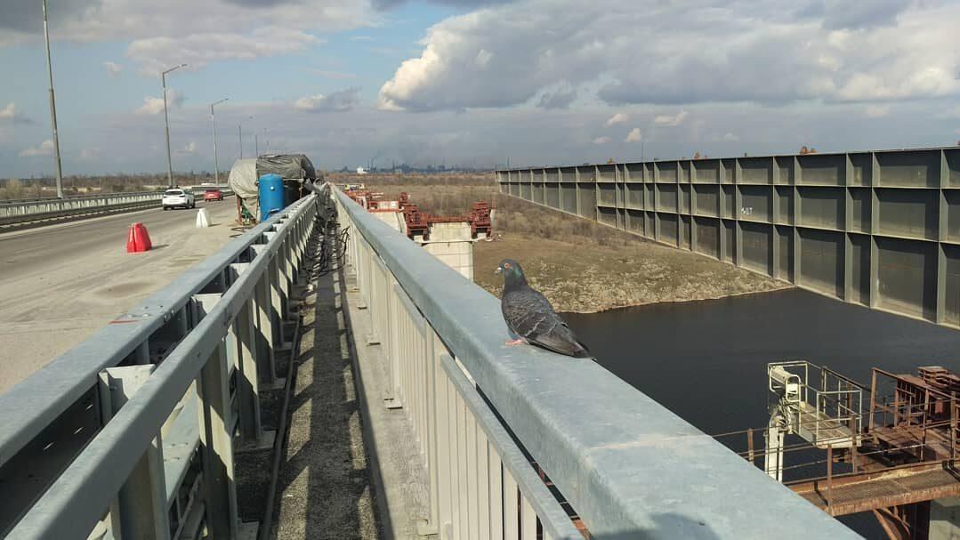 В Запорожье начали монтаж основы второй половины моста с Хортицы на Бабурку, – ФОТОРЕПОРТАЖ