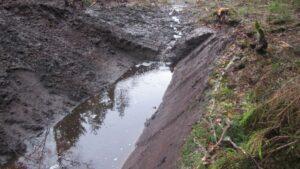 У Запорізькій області жінка знайшла свою матір мертвою в канаві
