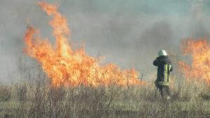 Весна прийшла - почалися пожежі: рятувальники тричі гасили вогонь в екосистемах