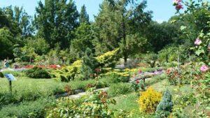 Ботанічний сад у Запоріжжі не працює
