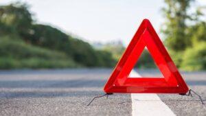 Под Запорожьем произошло смертельное ДТП: водитель вылетел с дороги, снес дерево и перевернулся