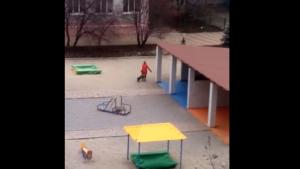 В Запорожье воспитательница детсада волокла по двору ребенка, которого забыла на прогулке, - ВИДЕО