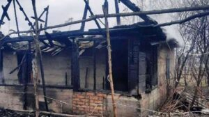 Під Запоріжжям у пожежі загинув чоловік, – ФОТО