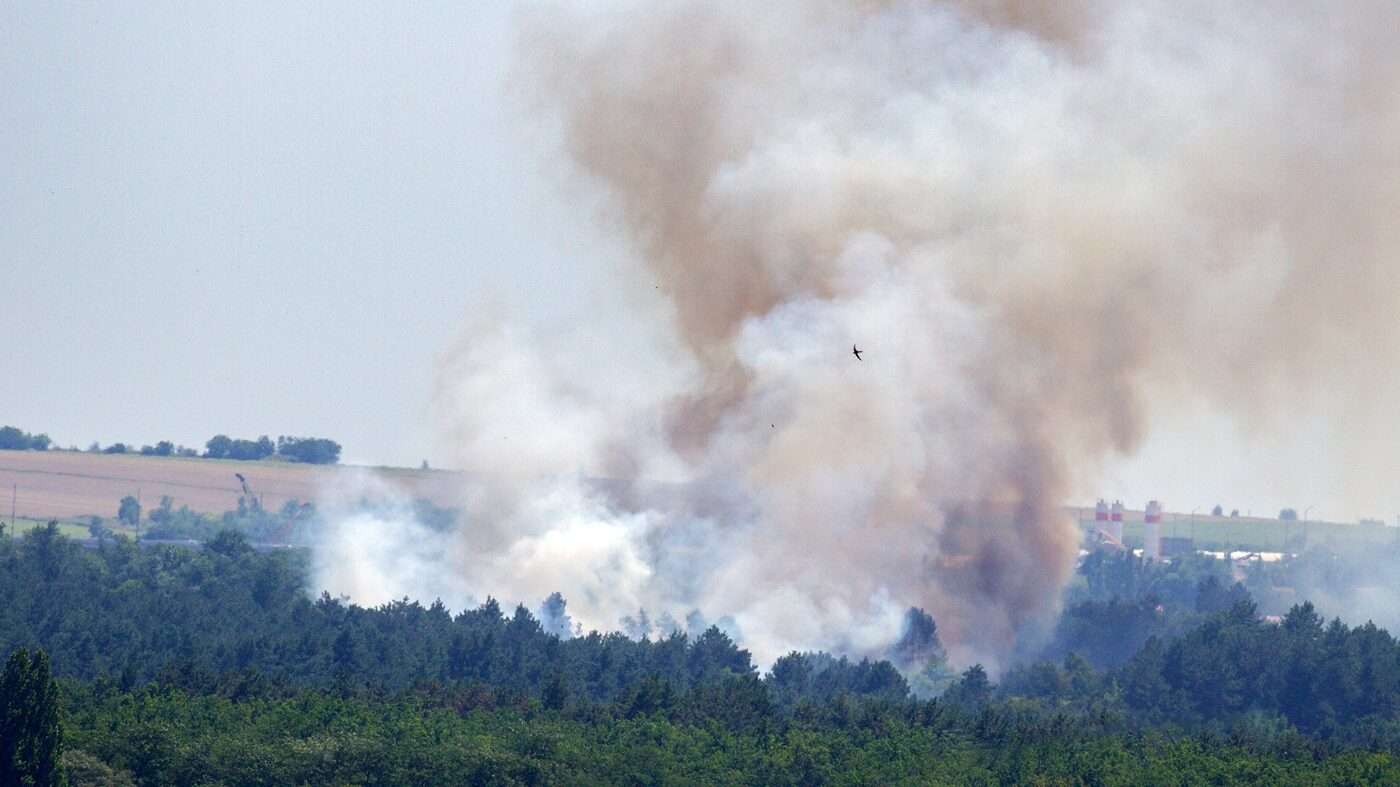 У Запоріжжя на Хортиці сталася велика пожежа: підозрюють підпал, – ФОТО