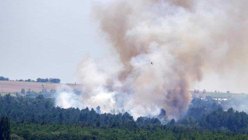 В Запорожье ликвидировали масштабный пожар на Хортице: в ГСЧС рассказали подробности