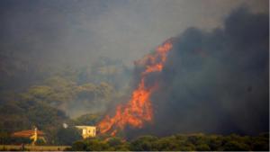 Украинские пожарные спасли два населенных пункта в Греции
