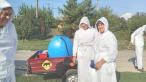В Запорожской области обнаружили африканскую чуму: введен карантин