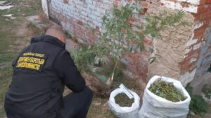 В Запорожской области работники полиции изъяли у гражданина около трех килограмм марихуаны, – ФОТО