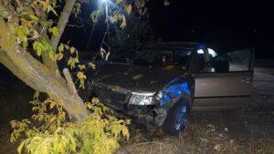 У Запорізькій області сталася смертельна ДТП: загинув 20-річний пасажир, – ФОТО