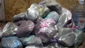 Бидоны и мешки с марихуаной: у жителя Запорожской области нашли наркотиков на полмиллиона гривен, - ФОТО