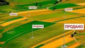 У Запорізькій області одна з найнижчих цін на землю, ніж в інших регіонах